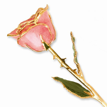 24k Gold Plated Trim Pink Rose