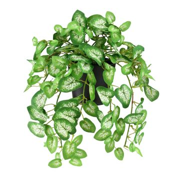 "8"" Decorative Kelly Green Variegated Spring Artificial Foliage in Pot"