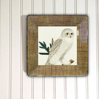 Owl / Owl Decor / Rustic Decor / trending items / Snowy owl / Owl Art / Owl Print / White owl / Decoupage Plate Wall Hanging / owl gift