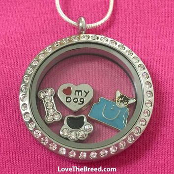 Chihuahua Floating Charm Locket Necklace