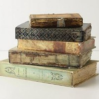 Well-Thumbed Book Box, Assorted-Anthropologie.com