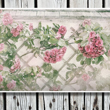Home Decor, Art Print, Flower Photography, Rustic Wall Art, French Decor, Roses, Pink, Green, Bedroom Decor, Living Room Wall Art, Shabby