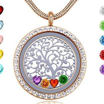 AUGUAU Memory Living Floating Charms Locket with Heart & Round Crystal Birthstones, Gifts for Women Kids Grandma Mother, 18k Gold 316L Stainless Steel Jewelry, Free Chain & Gift Box