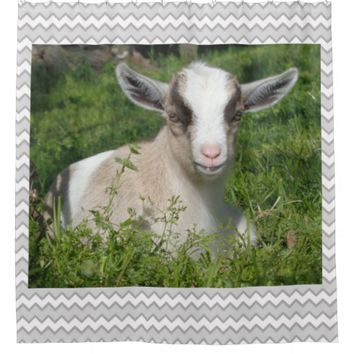 Baby Goat Kid Barnyard Farm Animal Grey Chevron Shower Curtain