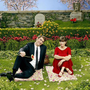 Pushing Daisies 11x17 TV Poster (2007)
