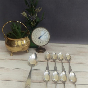 Theodore B Starr Sterling Silver Spoons/ Theodore B Starr Sterling/ Shell Pattern Spoons/ Antique Sterling Silver Spoons/ Sterling Teaspoons