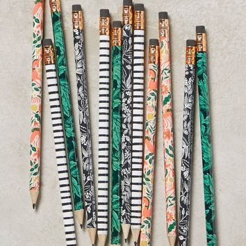 Botanical Pencils