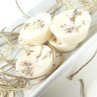 Soy Tarts - Frosted Peak Tops scented Soy Candle Melts -- (6)One Ounce Tarts