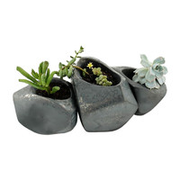 Growing Stones Succulent Planter - Set of 3