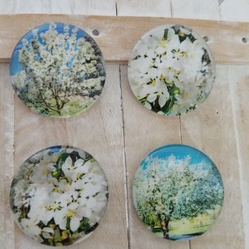 Floral magnets round glass magnets kitchen home decor gift