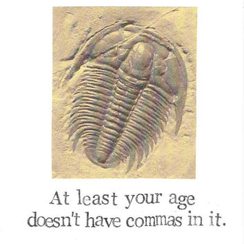At Least Your Age Doesn't Have Commas Trilobite Fossil Birthday Card | Science Natural History Paleontology Prehistoric Old Men Women
