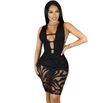 Sexy Patchwork Cut Out Women Mesh Bodycon Dress
