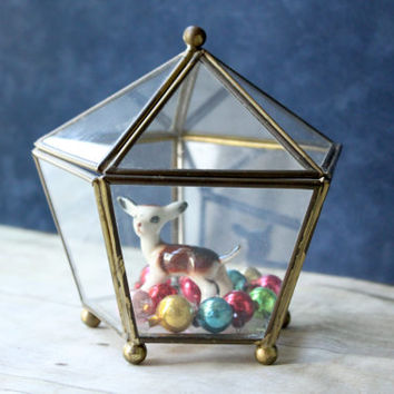 Geometric Pentagon Display Case Vintage Glass Brass Diamond Shaped Polyhedron Box Terrarium Trinket Box Vintage Display Box