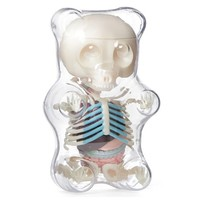 Anatomy Gummy Bear (Clear)