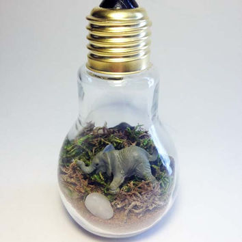 Recycled Elephant Light bulb Terrarium