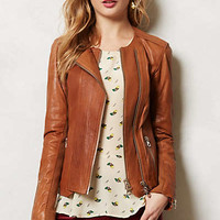 Sylvana Leather Moto Jacket