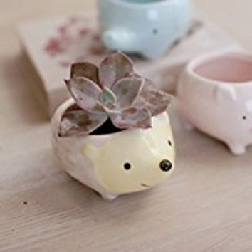 Bleiou 3PCS Little Animals Ceramic Flowerpot Pig Elephant Hedgehog Planter On Sale Cute Succulent Plants Flower Pot (3)