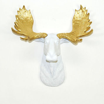 Faux Taxidermy - The MINI Glitz - Resin Moose Head W/ Gold Antlers - Faux Taxidermy