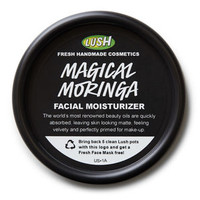Magical Moringa Primer