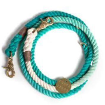 Adjustable Leash Teal Ombre by Found My Animal at Baysidebuddy.com