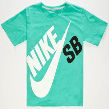 quality design 0a49c 20066 Nike Sb Big Logo Boys T-Shirt Mint In Sizes
