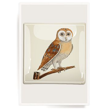Owl Hoot Decoupage Glass Tray