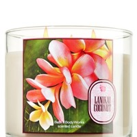 14.5 oz. 3-Wick Candle Lanikai Coconut