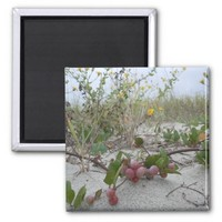 Wild Berries on the Beach 2 Inch Square Magnet