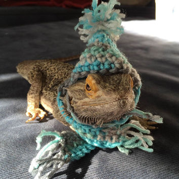 Handmade Crocheted Beanie Hat and Scarf for Bearded Dragons