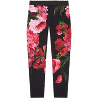 Dolce & Gabbana Floral Print Trousers | Harrods
