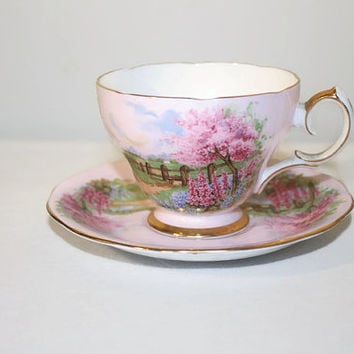 Queen Anne Meadowside Teacup and Saucer, English Bone China Pink