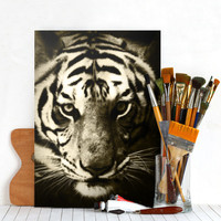 Tiger Glance by Fotios Pavlopoulos | Displate