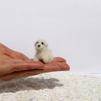 Needle felted miniature dog, tiny puppy, made to order, doll hause animal, tiny poodle