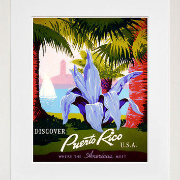 Shop puerto rico art on wanelo for Acanthus decoration puerto rico