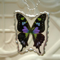 Real Butterfly Pendant  Purple Spotted Swallowtail by workofwhimsy