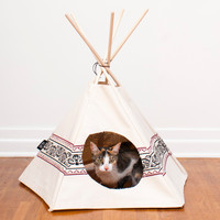 Hunter | Cat Tipi