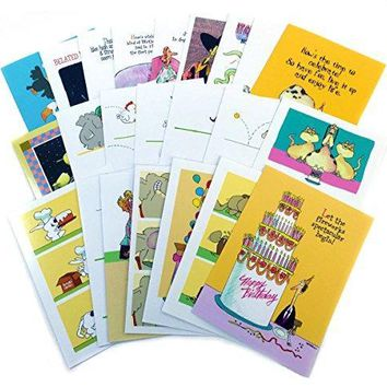 Birthday Card Assorted Humorous - Funny Boxed Birthday Card Set - Birthday Greeting Cards - Free Shipping