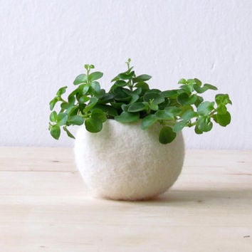 Best Flower Vases And Bowls Products On Wanelo