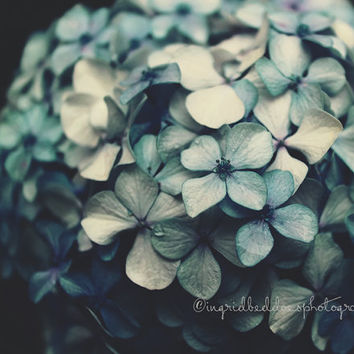 Hydrangea photography, flower print, dark blue flowers, nature photography, fine art print, moody wall decor, bedroom, home decor