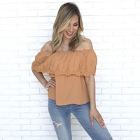 Fiesta Feliz Embroider Top in Rust