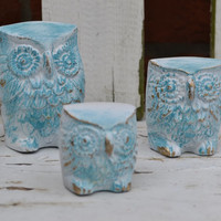vintage owl family, upcycled white and aqua,  distressed. bright housewares, home decor, owl nursery decor