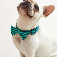 Anthropologie - Printed Bowtie Collar
