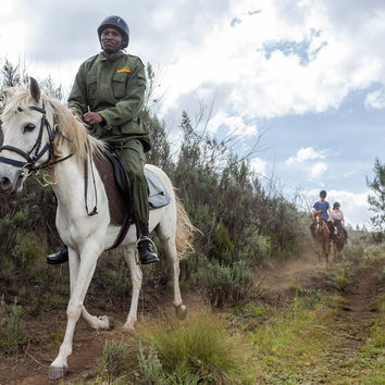 Donation To IEF : The Mounted Horse Patrol Anti-Poaching Unit
