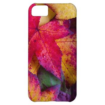 Autumn Leaves #2 Case For iPhone 5C