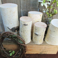 Birch Wood Logs,  Rustic Centerpiece, Birch Wood Centerpiece
