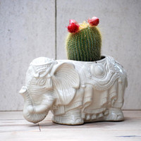 lucky elephant planter large ceramic succulent planter indoor planter garden handmade ceramics
