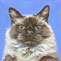 Custom Cat Portrait, pet portrait, pet painting, acrylic on an 8x8 wooden canvas board