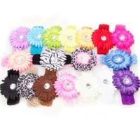 Ema Jane - Large Gerber Daisy Flower Hair Clip Bows with Soft Stretch Crochet Child Head Bands (32 Pack, 16 Flowers + 16 Headbands)