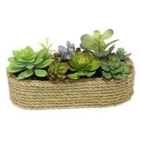 SONOMA life + style Artificial Succulent Arrangement (Natural)