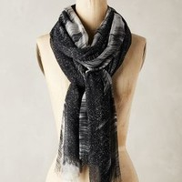 Inkpot Ombre Scarf by Anthropologie Black & White One Size Scarves